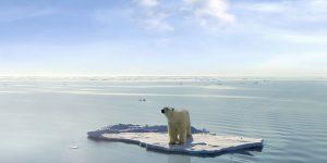karmacom csr nachhaltigkeit klimarechner