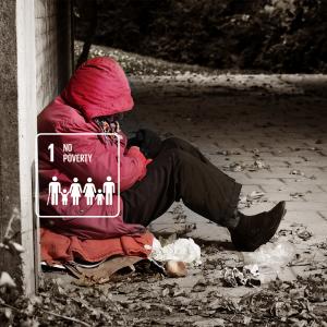 karmacom Sustainable Development Goals Armut
