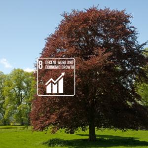 karmacom Nachhaltigkeit Sustainable Development Goals Wirtschaftswachstum