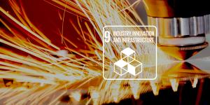 karmacom Nachhaltigkeit CSR SDG 9 Green Innovation